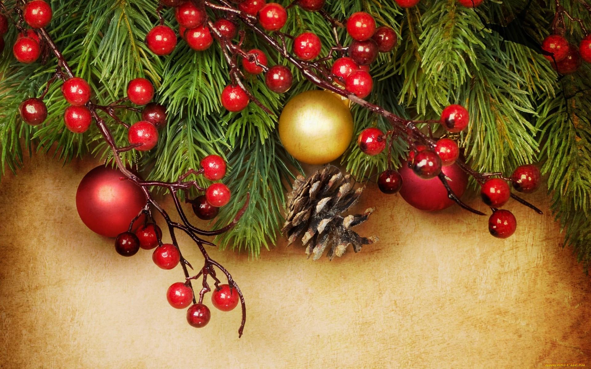 быть еловая ветка открытка новый год был передан ведомство